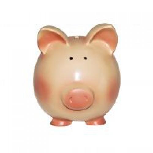 Jak efektywnie zarządzać domowym budżetem?