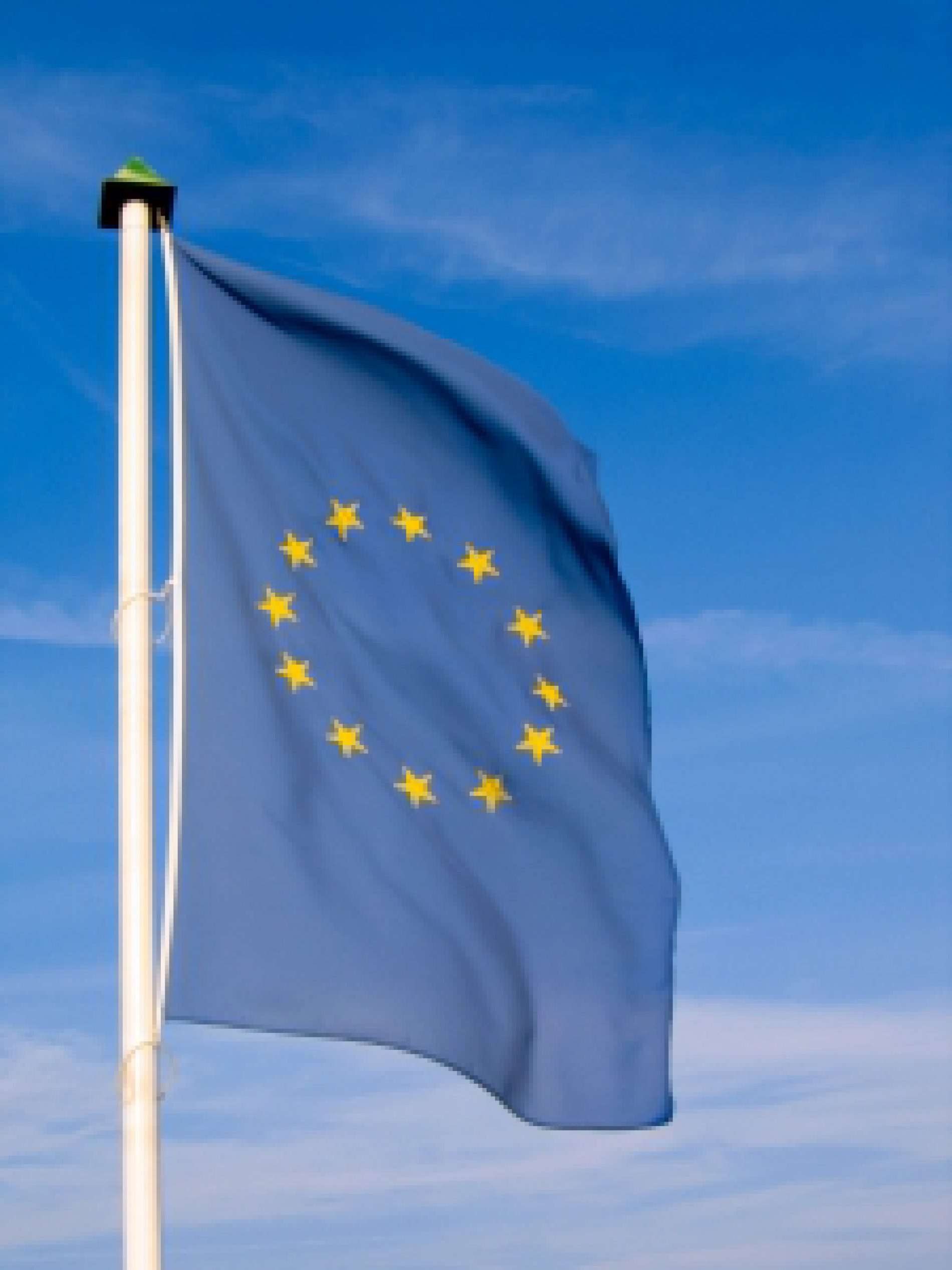 Wyniki wyborów do PE w regionie