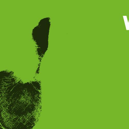Już wkrótce rozpocznie się WAMA Film Festival 2016